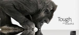 GorillaGlass_tutiendastore.es